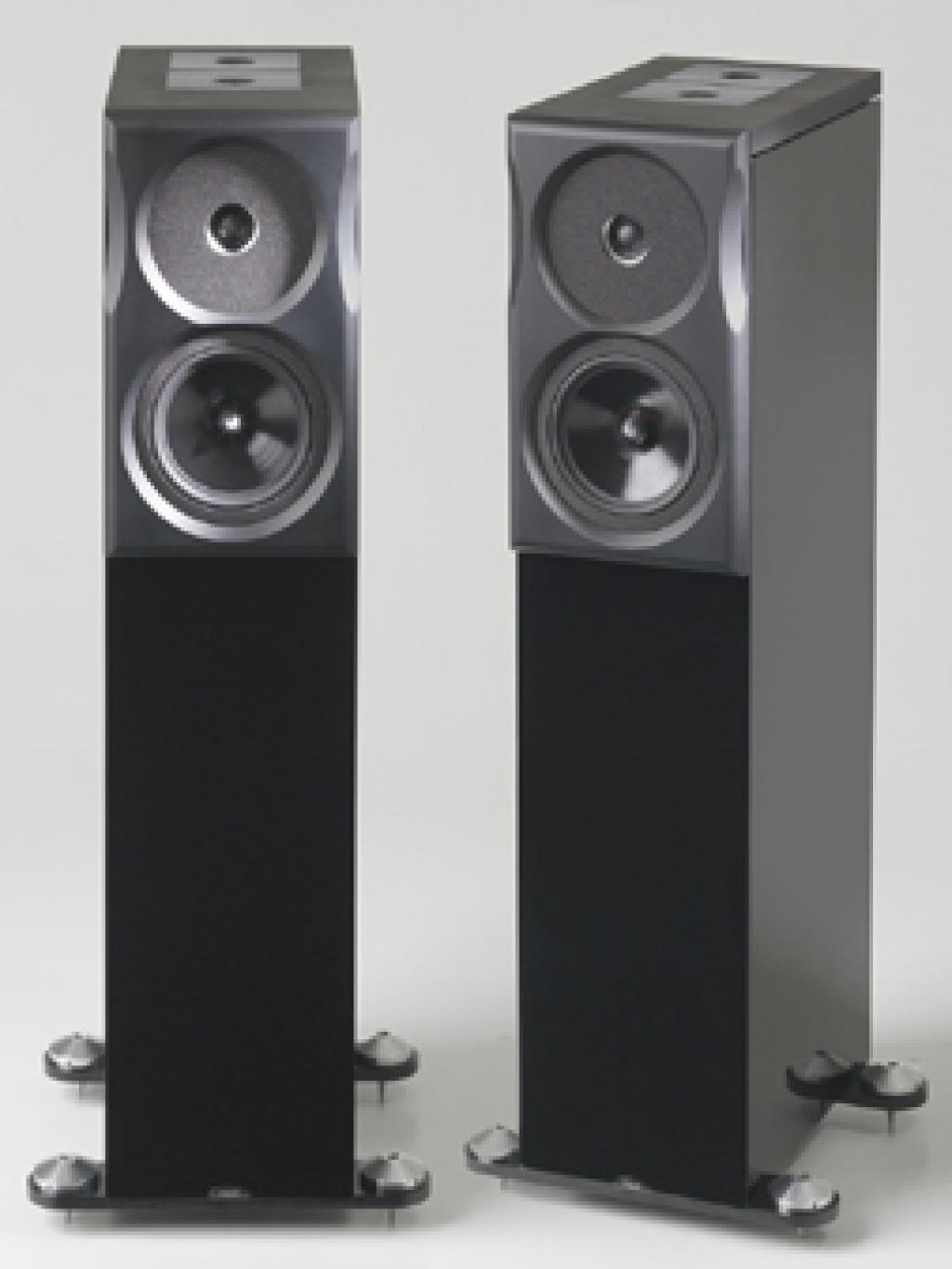 Boxe NEAT Acoustics Ultimatum XL6 premium finish Piano Black