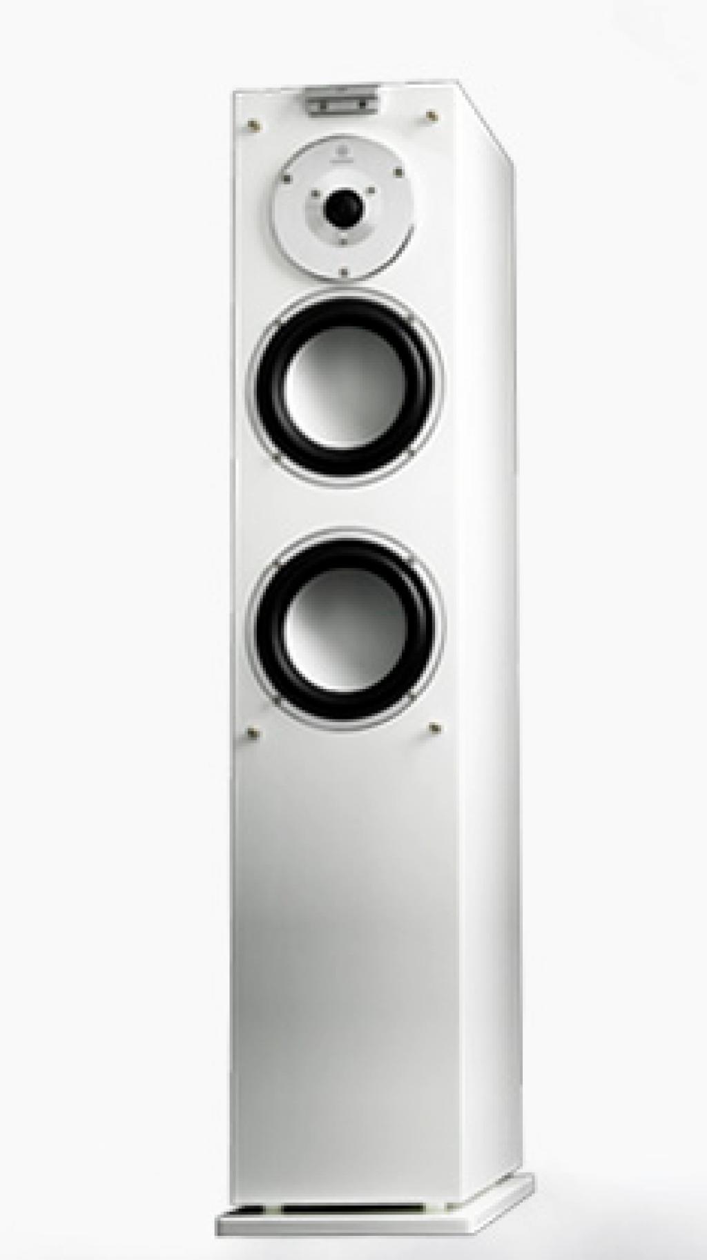 Boxe Audiovector X 3 Signature