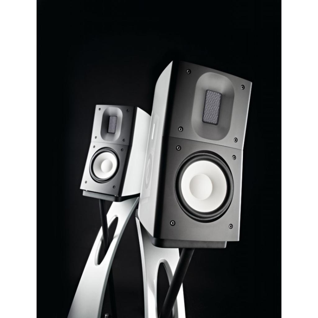 Boxe Raidho Acoustics C-1.1